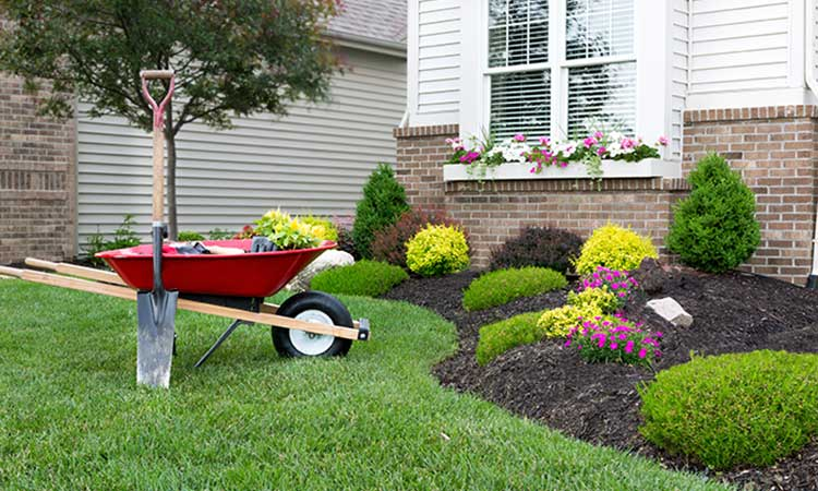 Image result for landscaping services